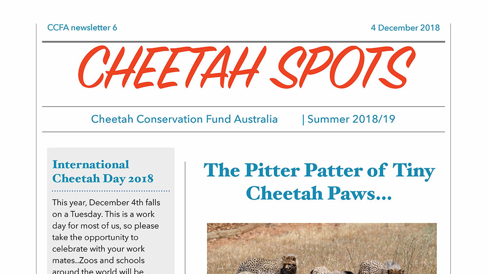 Cheetah Spots – Issue 6