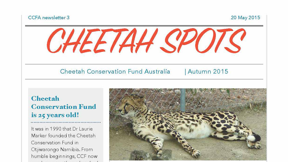 Cheetah Spots – Issue 3