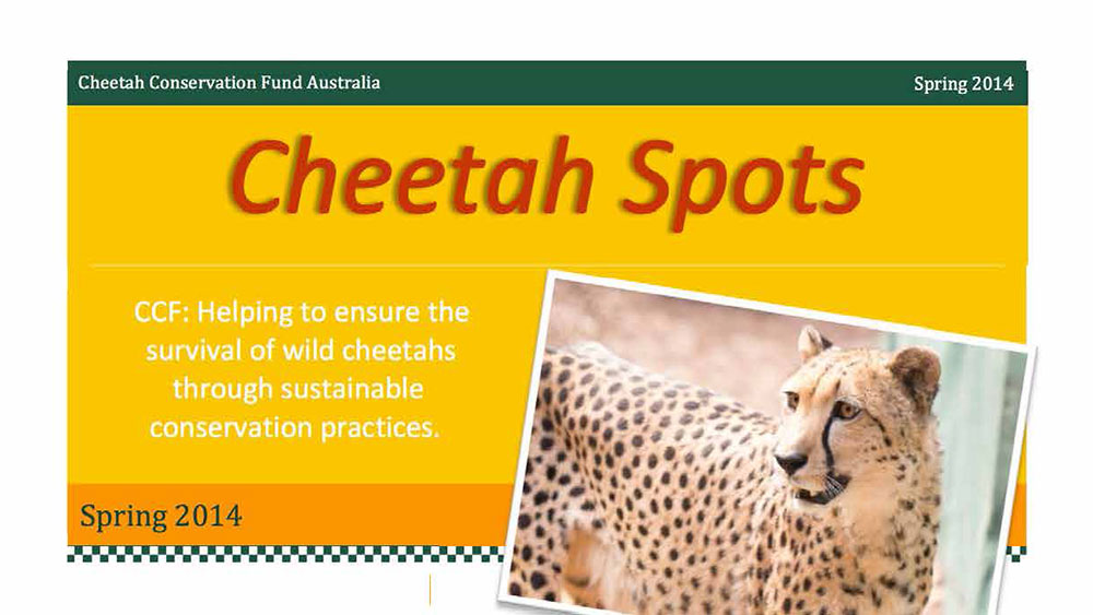 Cheetah Spots – Issue 1