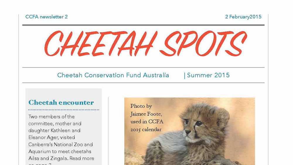 Cheetah Spots – Issue 2