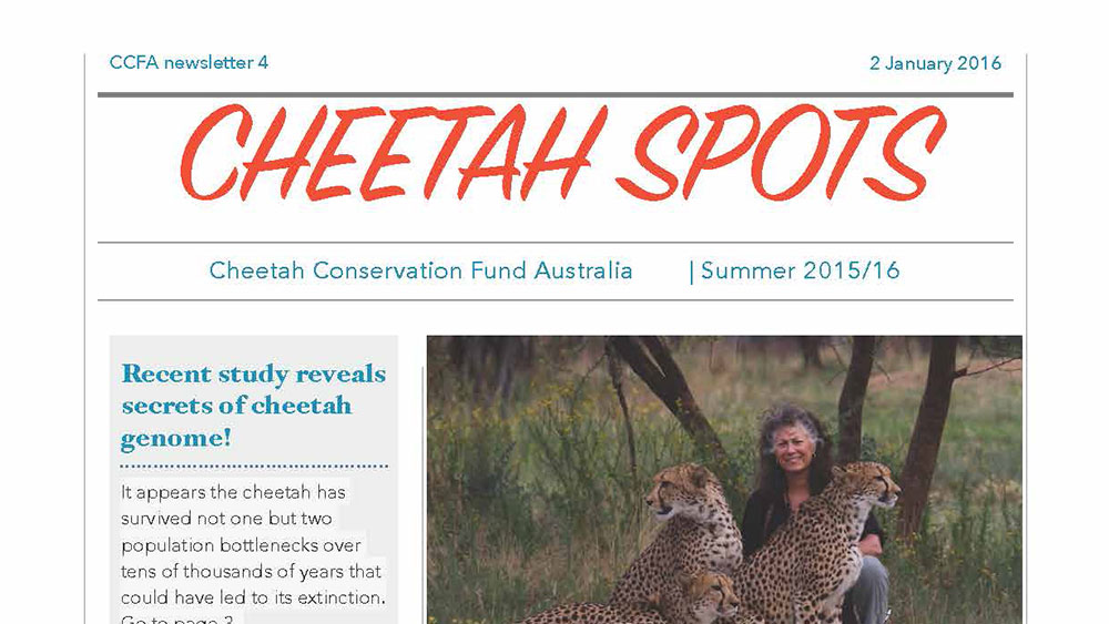 Cheetah Spots – Issue 4