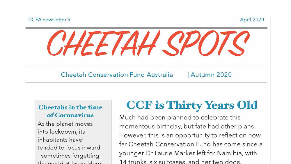 Cheetah Spots – Issue 9