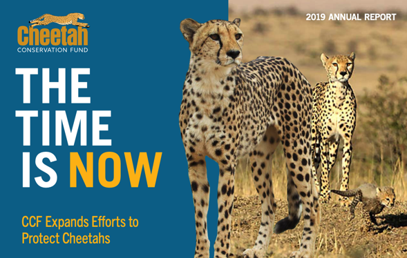 The Time is Now – 2019 Impact Report