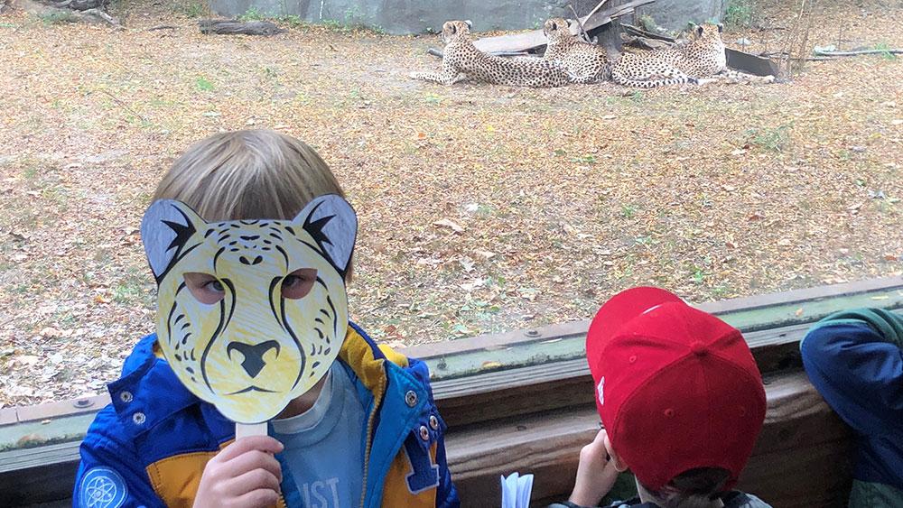 Julius Mercure Loves Cheetahs