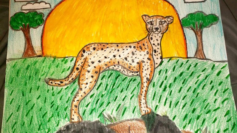 "CCF's Cheetah Friend on the ""Zoo Crew"" Makes a Change for Cheetahs"