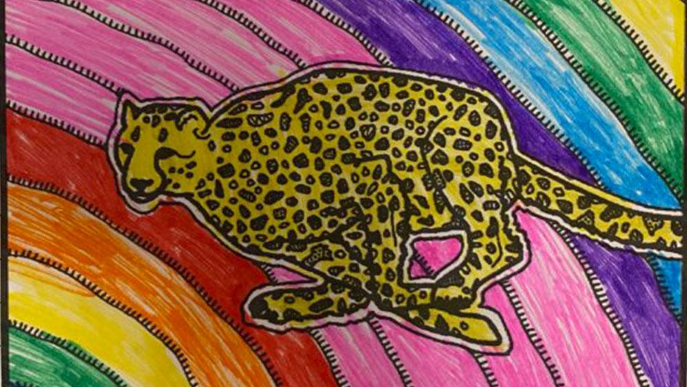 Winter Camp Celebration for International Cheetah Day