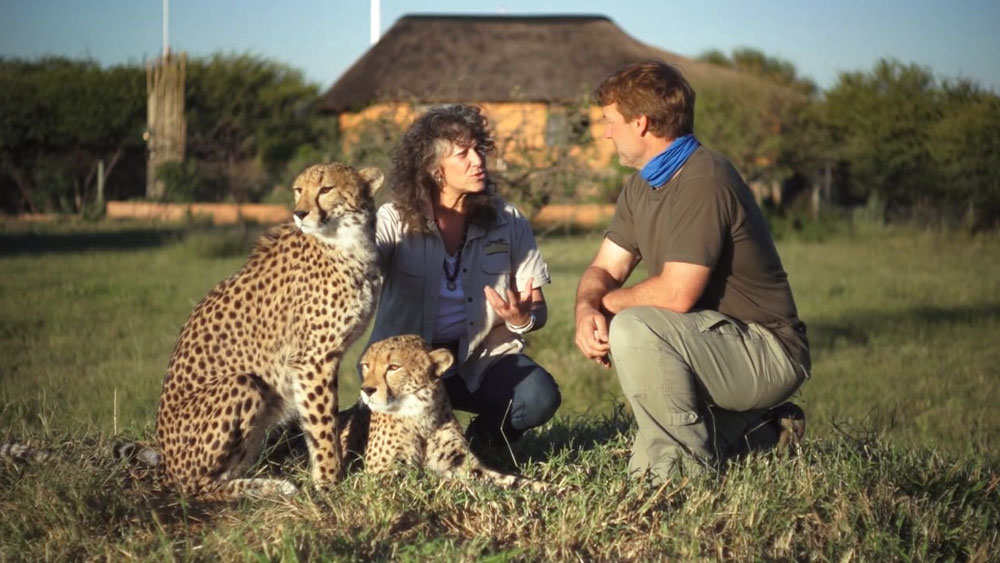 Namibia: Land of the Cheetah