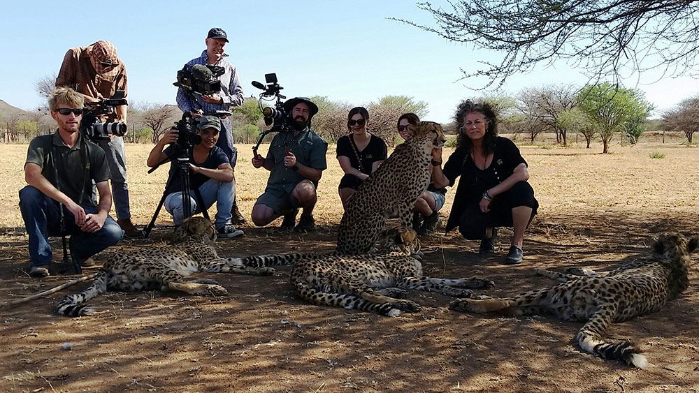 Cheetah Mobile Partners with CCF