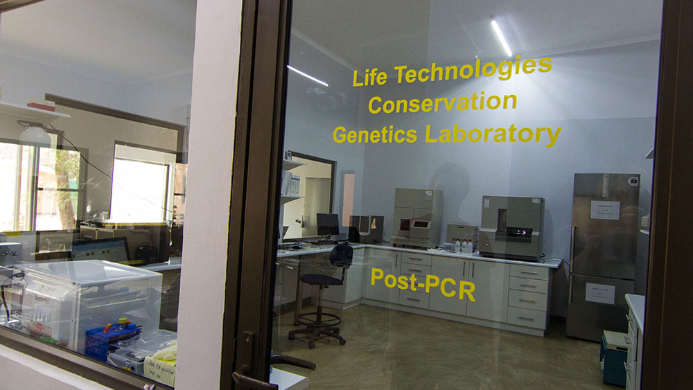 CCF's Genetics Lab Has Moved