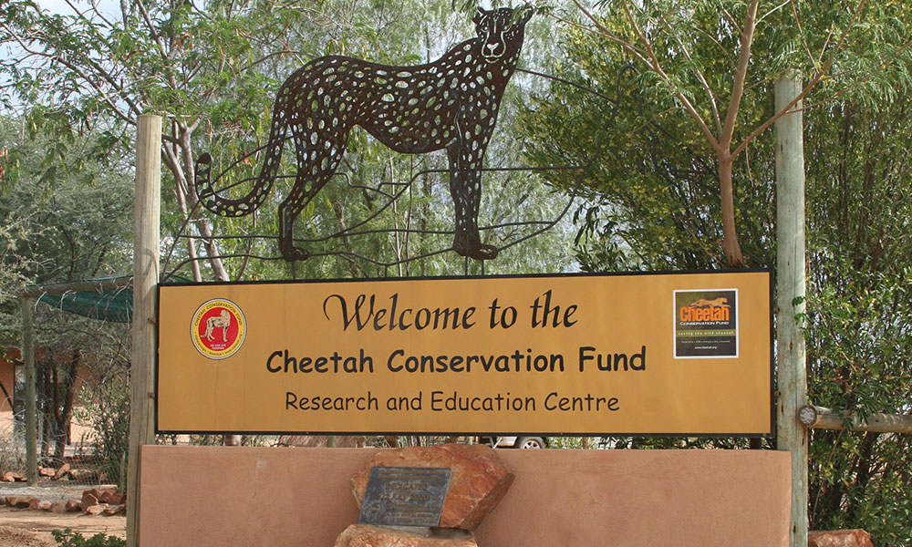 Environmental education at CCF's Research and Education Centre in Namibia