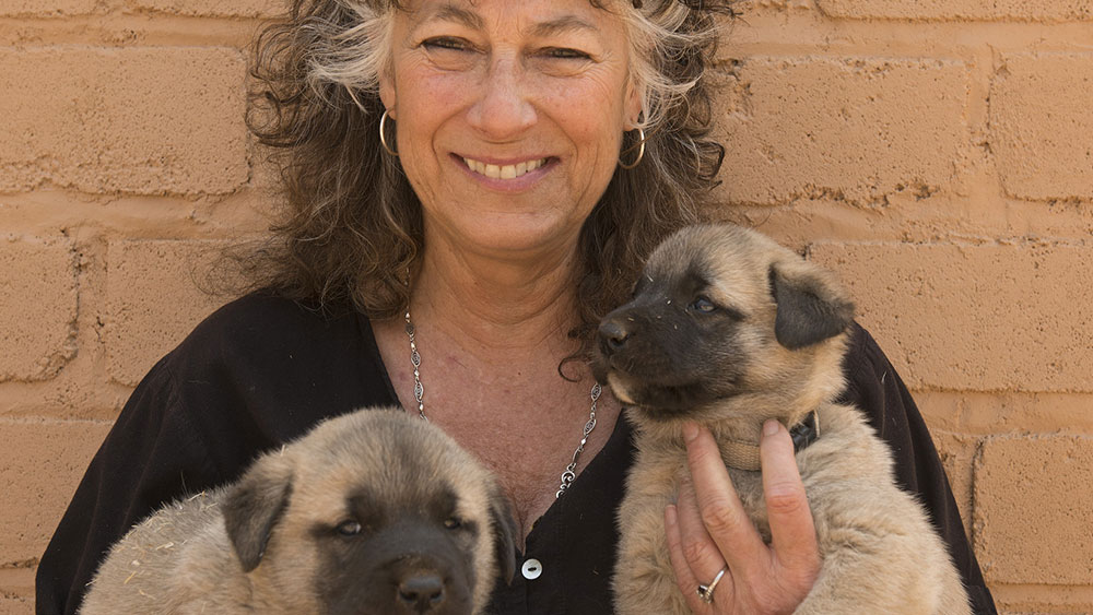 The Year of the Livestock Guarding Dog