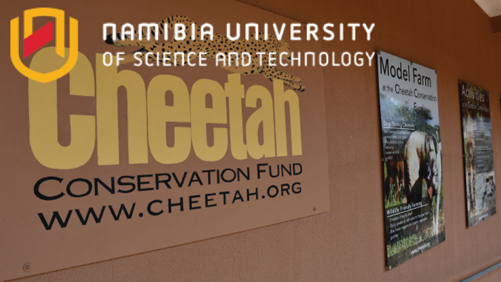 Nambia University of Science and Technology Students Take on Work Integrated Learning at CCF