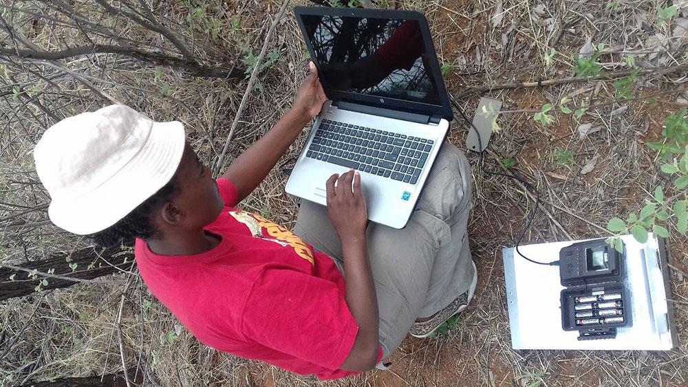 Intern Story – Cheetah Conservation Fund (CCF) Field Attachment Journey