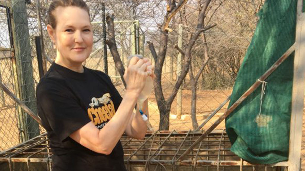 From Virginia to Namibia – Volunteering for CCF on Two Continents
