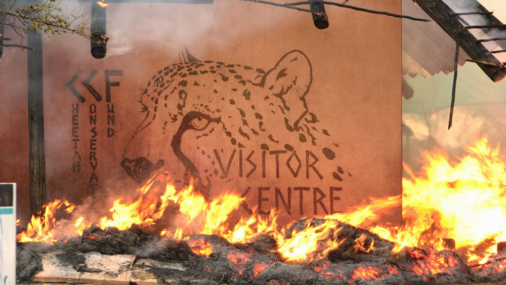 CCF's Visitor Centre Destroyed by Fire
