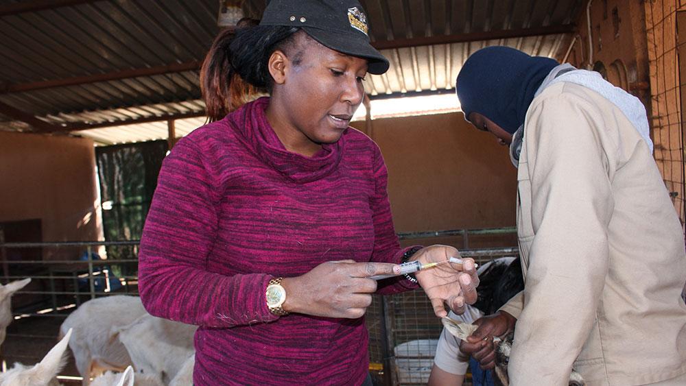 Featured Staff – Vistoria Tuhemwe – Veterinary Technician