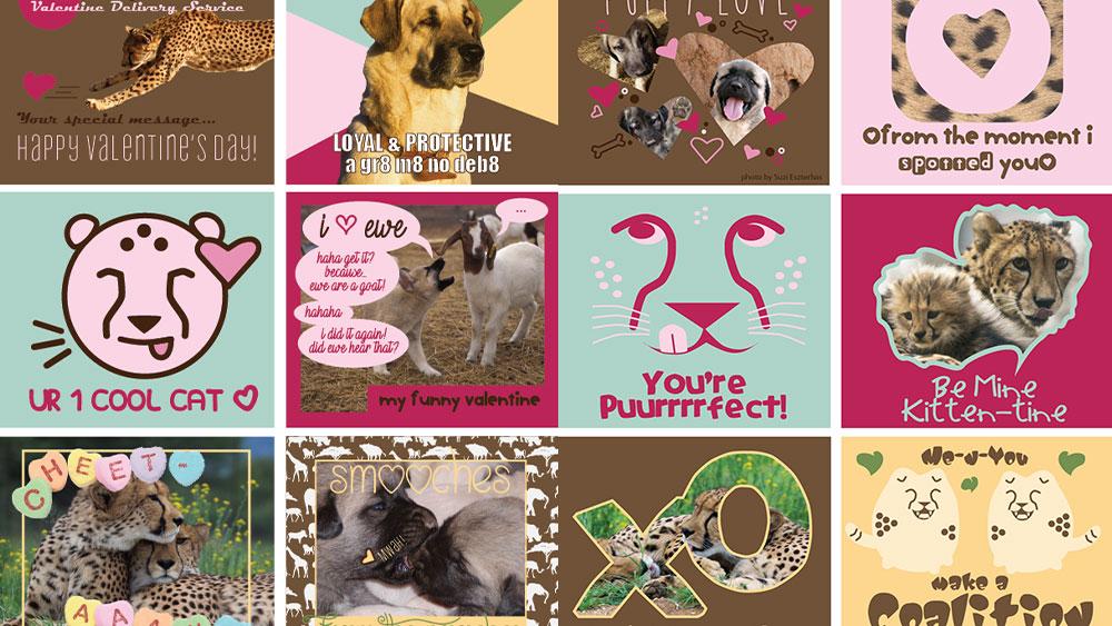 Printable Cheetah (and Dog) Valentines