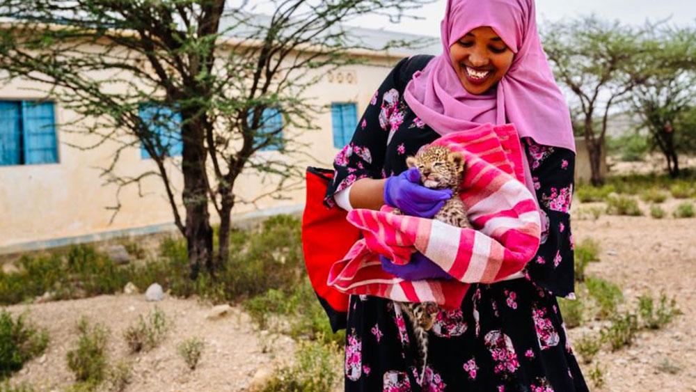 Featured Staff – Asma Bile – Veterinarian CCF in Somaliland