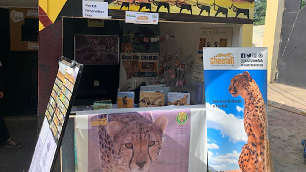 Hargeysa International Book Fair: An Intersection of Cultures, Communities and Conservation